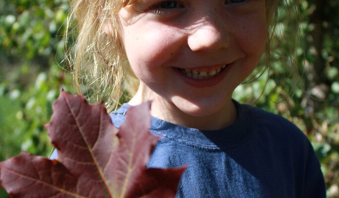 Creating The Best Homeschooling Environment